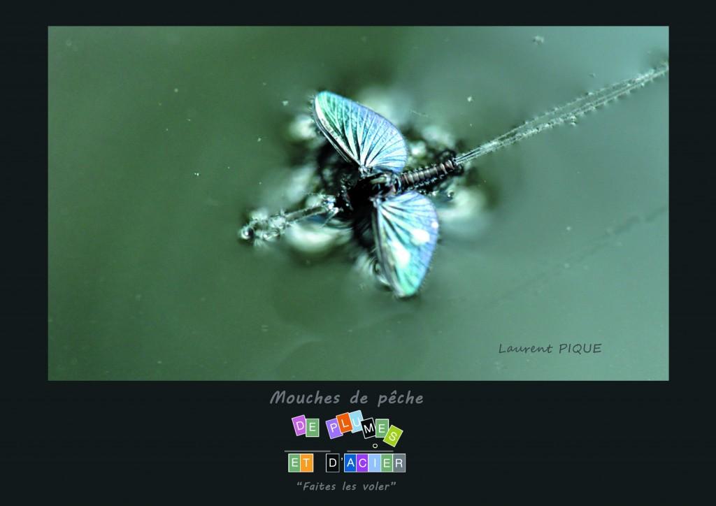 """Mouches de pêche """"De plumes et d'acier""""351"""