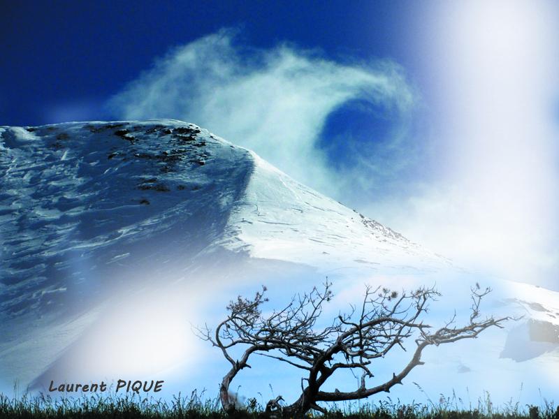 """Mouche peche """"De plumes et d'acier"""" Montagne7"""