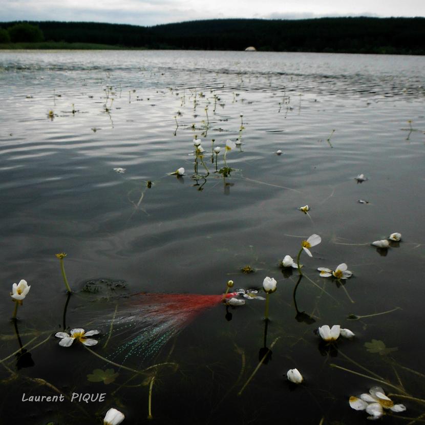 """Mouche peche """"De plumes et d'acier"""" Lac de Charpal2"""