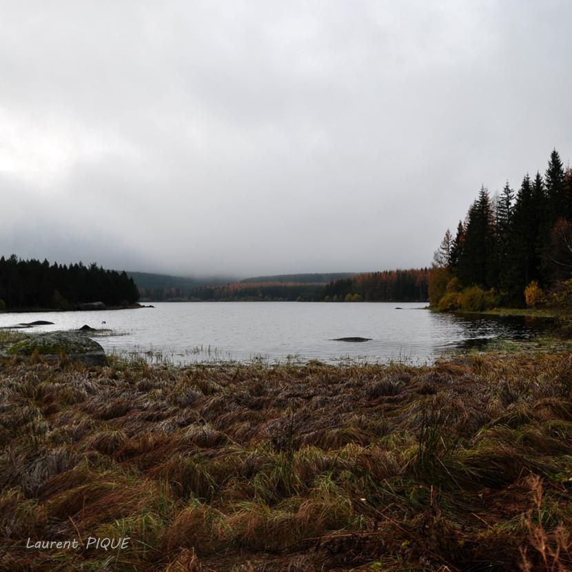 """Mouche peche """"De plumes et d'acier"""" Lac de Charpal"""