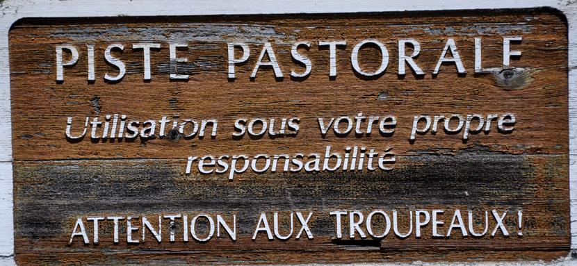 """Mouche peche """"De plumes et d'acier"""" Piste pastorale"""