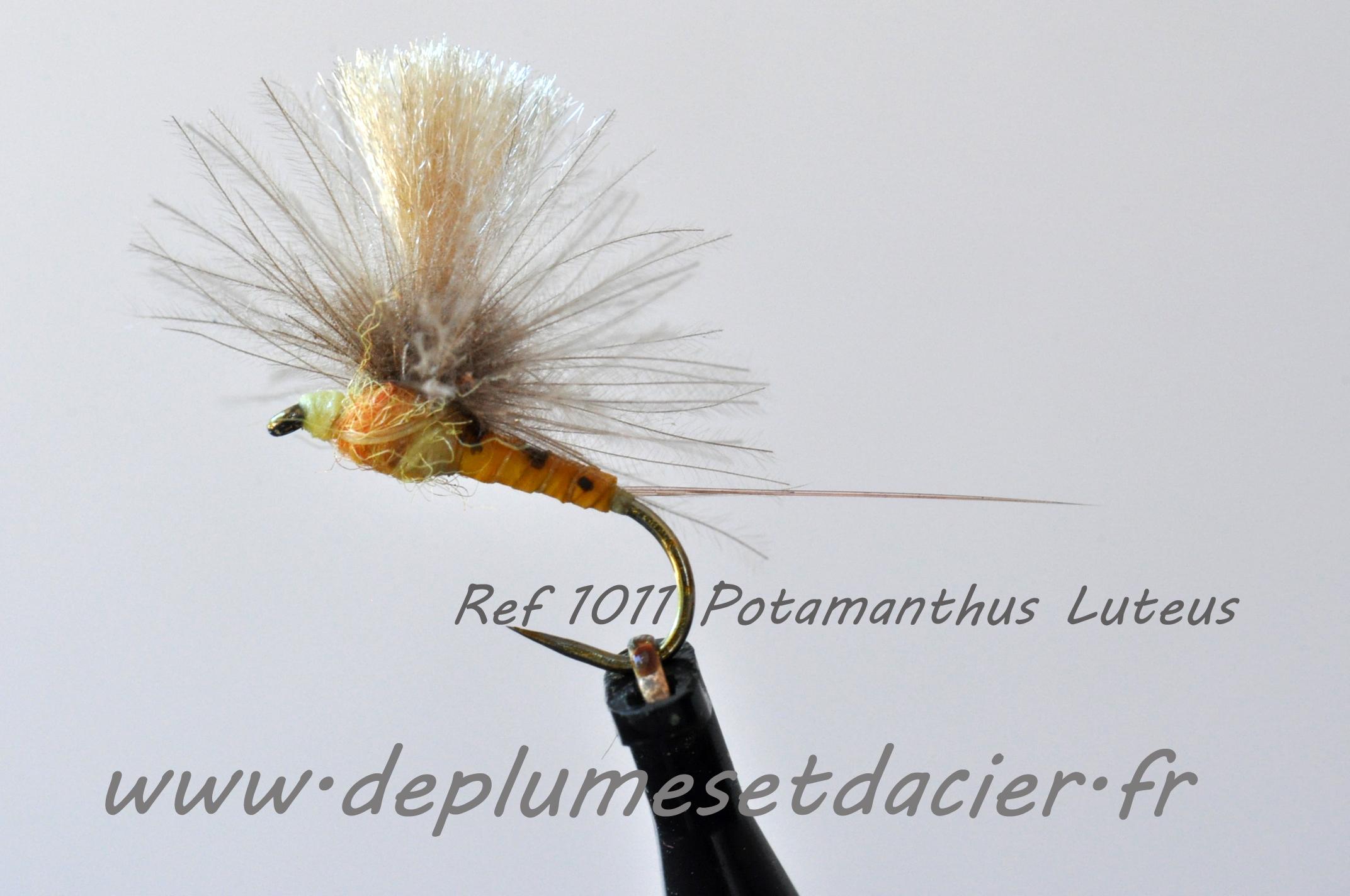 """Mouche pêche """"De plumes et d'acier"""" Potamanthus Luteus"""
