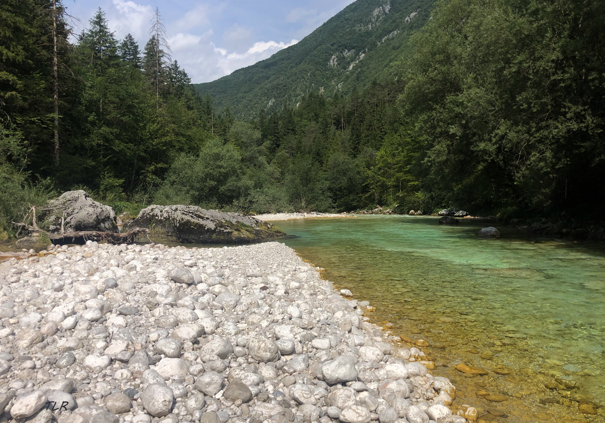 Trip en Slovénie 4