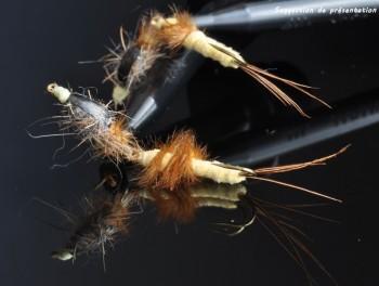 Nymphe articulée de mouche de mai