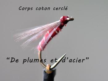 Noyée Limousine Corps coton