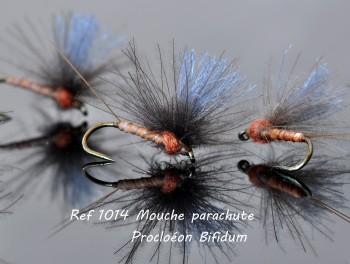 Mouche Parachute Procloéon Bifidum