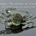 Mer Crabe vert lesté
