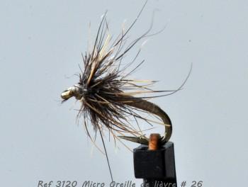 Micro-Oreille de lièvre